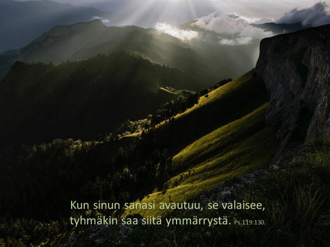 vuorelta