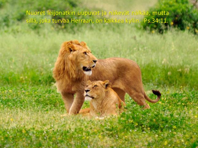 leijonia