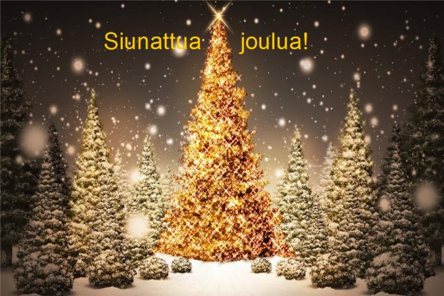 joulumetsa